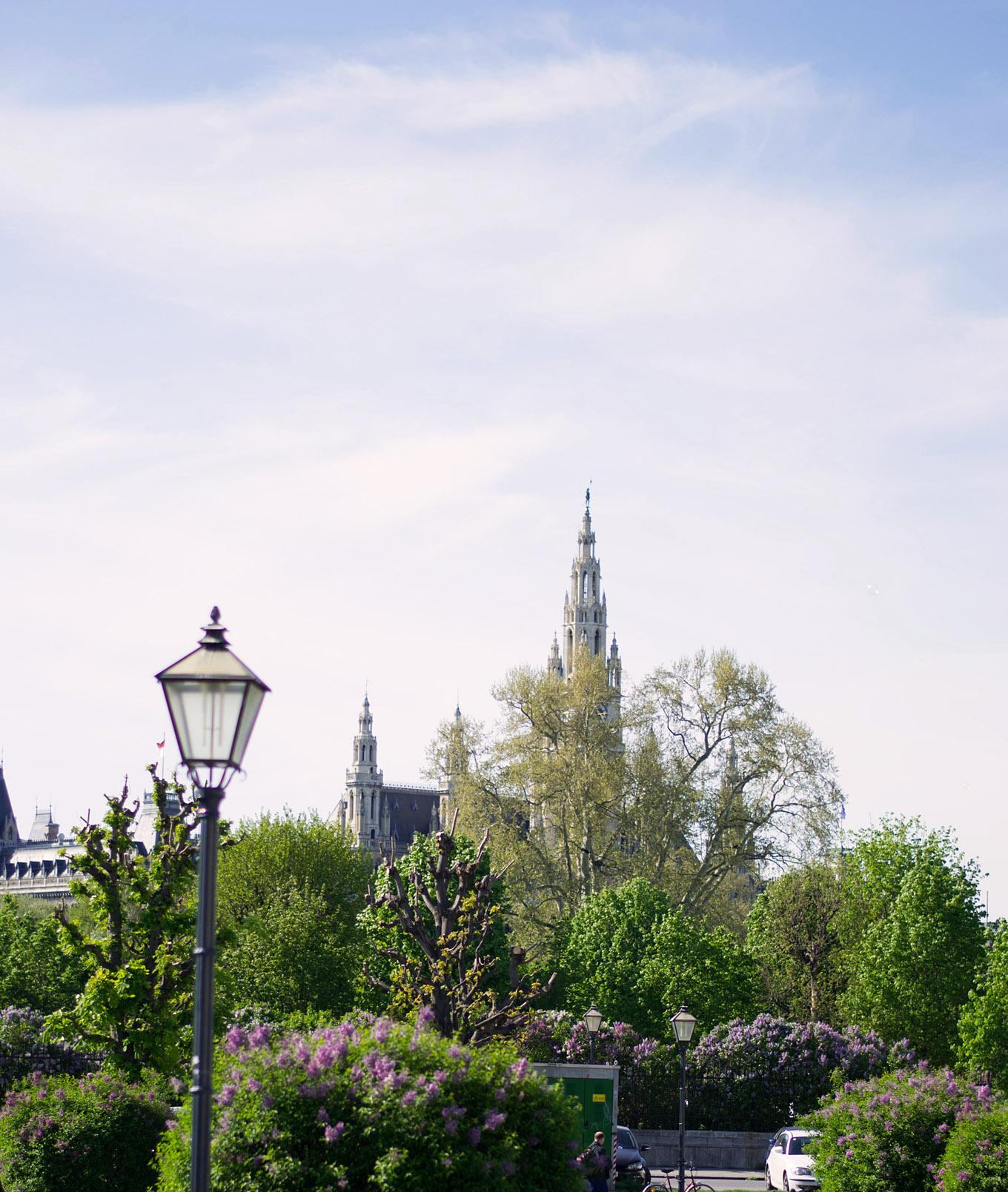 Fotografisch durch die Jahreszeiten Frühling in Wien 3 beschn